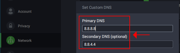 A preview of how Private Internet Access shows Google Public DNS servers
